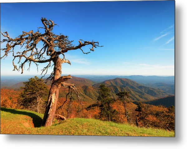 Metal Print featuring the photograph Autumn Scenic Drive Along The Blue Ridge Parkway In North Caroli by Dee Browning