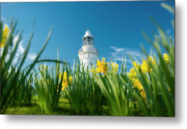 Metal Print featuring the photograph Beautiful Table Cape Lighthouse In Tasmania. by Rob D