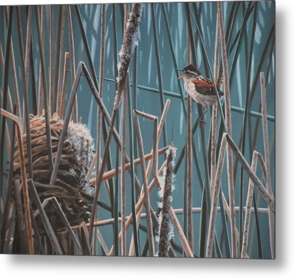 Metal Print featuring the painting Cattail Hideaway by Peter Mathios