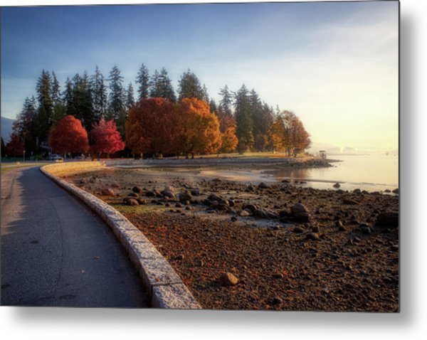 Colorful Autumn Foliage At Stanley Park Metal Print