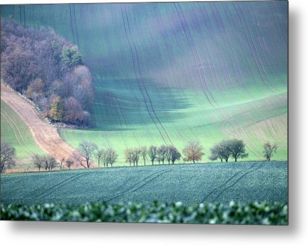Metal Print featuring the photograph Autumn In Moravia 1 by Dubi Roman