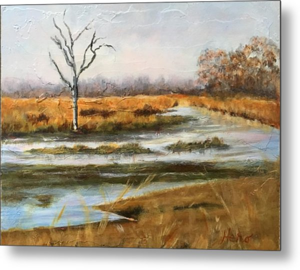 Early Spring On The Marsh Metal Print