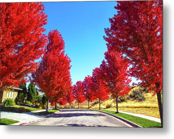 Metal Print featuring the photograph Fall In Boise by Dart and Suze Humeston