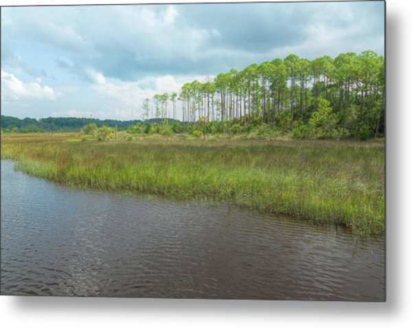Metal Print featuring the photograph Florida Marshland by John M Bailey