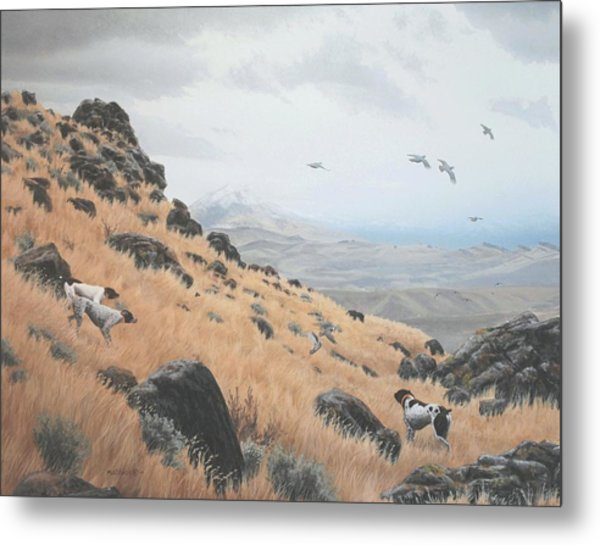 High Desert Dreams Metal Print