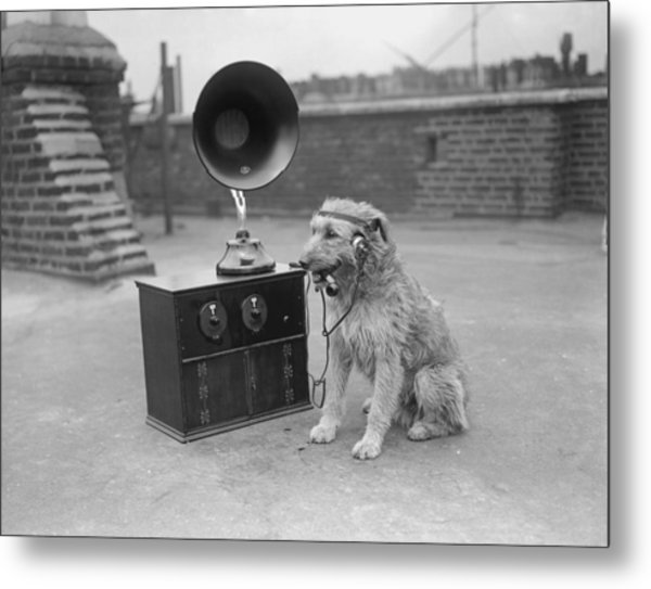 His Masters Voice Metal Print by Fox Photos