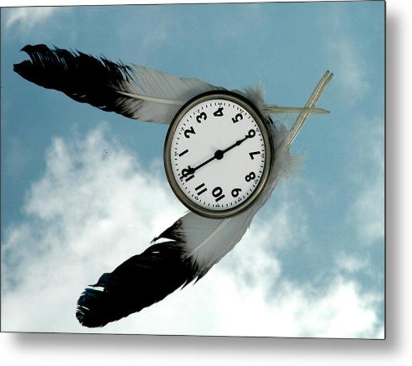 Metal Print featuring the photograph How Time Flies by Rein Nomm