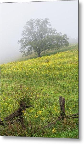 Lone Tree Hill - Blue Ridge Parkway Metal Print