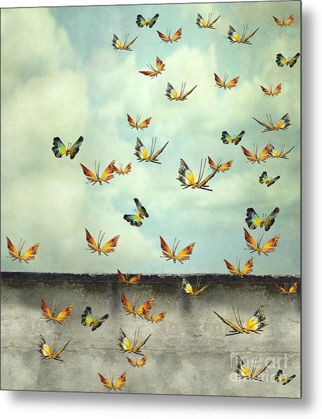 Many Colorful Butterflies Flying Into Metal Print