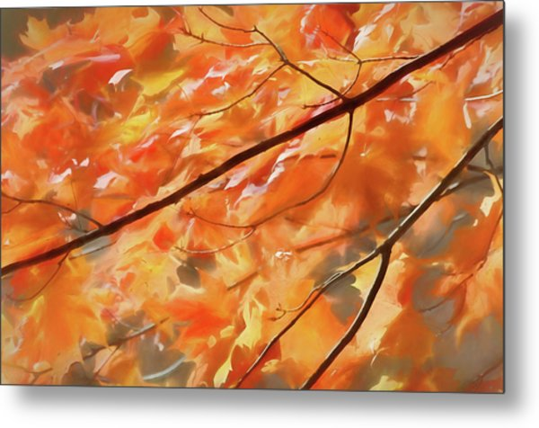 Metal Print featuring the photograph Maple Leaves On Fire by Rob Huntley