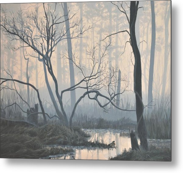 Misty Hideaway - Wood Duck Metal Print