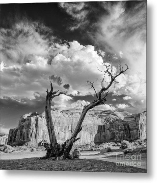 Monument Valley Juniper Tree And Mesa Metal Print
