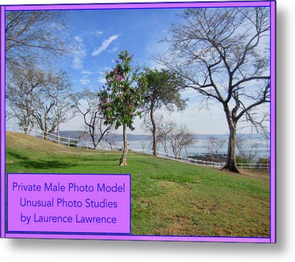 Private Photo Model Bn Metal Print