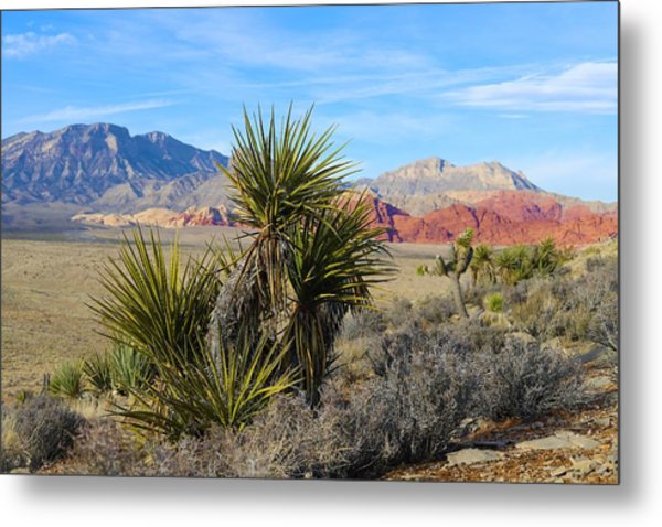 Red Rock Canyon National Conservation Area Metal Print