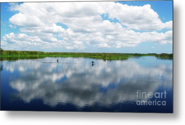 Skyscape Reflections Blue Cypress Marsh Near Vero Beach Florida C6 Metal Print