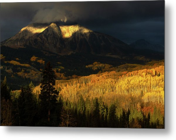 The Golden Light Metal Print
