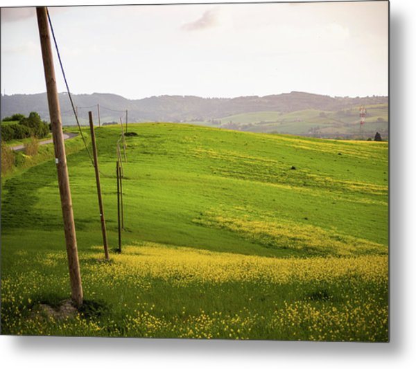 Tuscan Landscapes. Hills In The Spring Metal Print