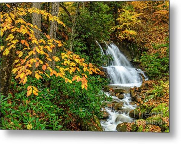 Waterfall And Fall Color Metal Print