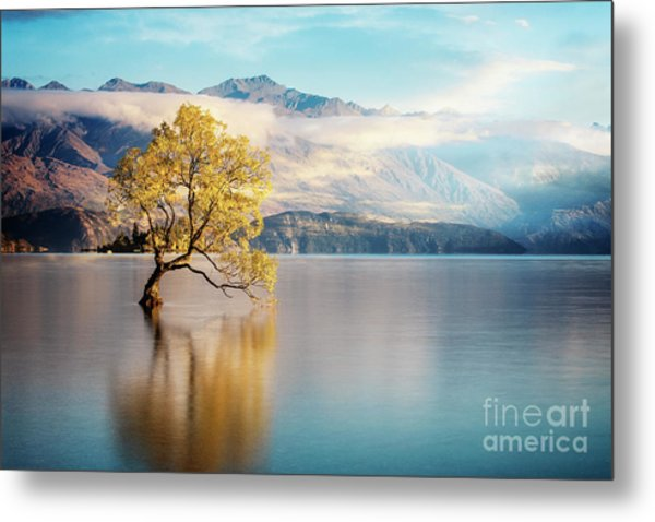 Alone And Determined Metal Print