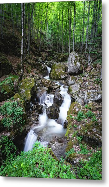 Bela River, Balkan Mountain Metal Print