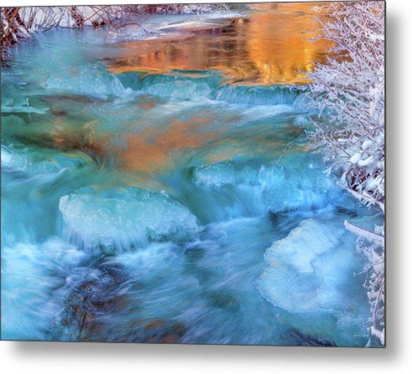 Color Of Winter Metal Print by Leland D Howard