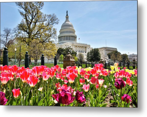 Usa, Washington D Metal Print by Hollice Looney
