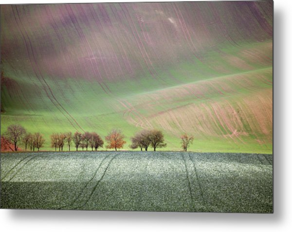 Metal Print featuring the photograph Autumn In Moravia 3 by Dubi Roman