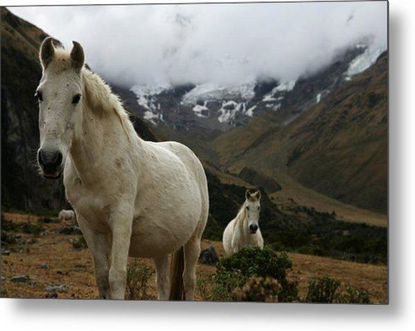 Peru Trekking Metal Print by Brent Stirton