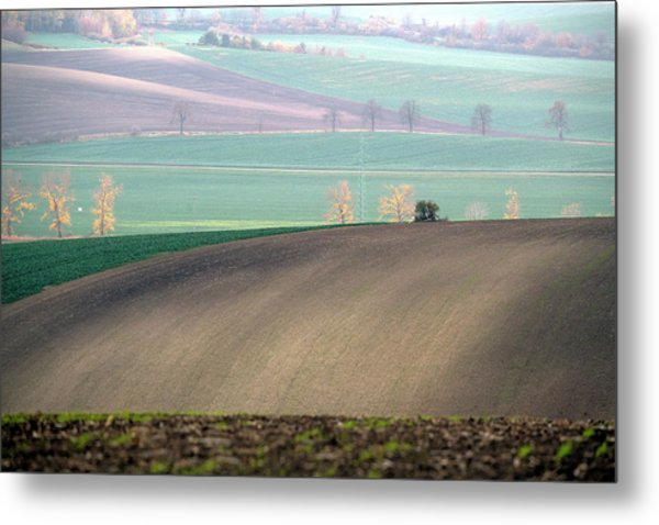 Metal Print featuring the photograph Autumn In Moravia 5 by Dubi Roman