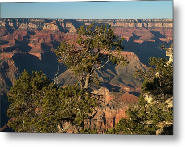 Grand Canyon Beauty Metal Print