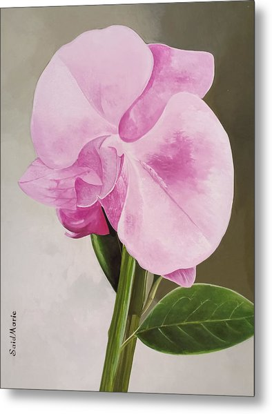 A Beautiful Rose Metal Print
