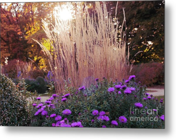 A Flower Bed In The Autumn Park Metal Print