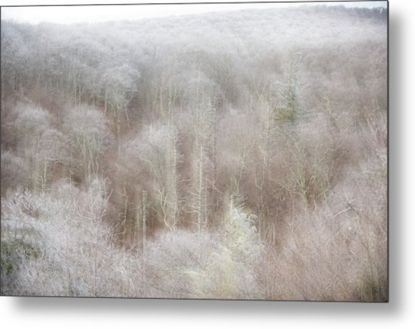 A Ghost Of Trees Metal Print
