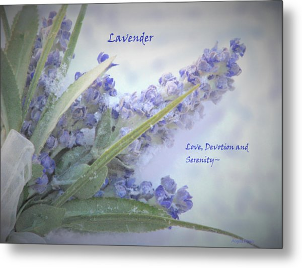 A Gift Of Lavender Metal Print