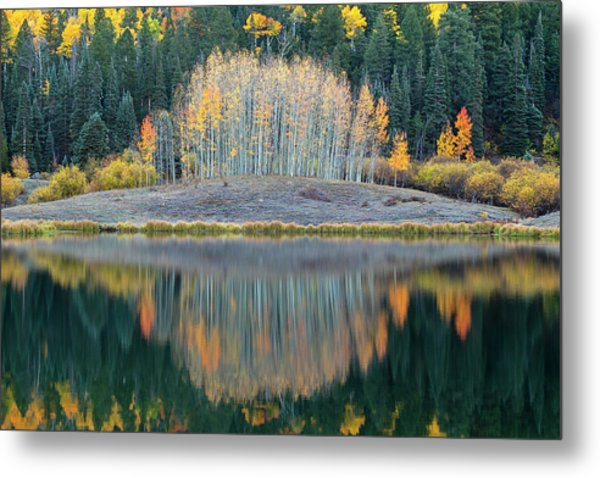 Metal Print featuring the photograph A Little Spice by Angela Moyer