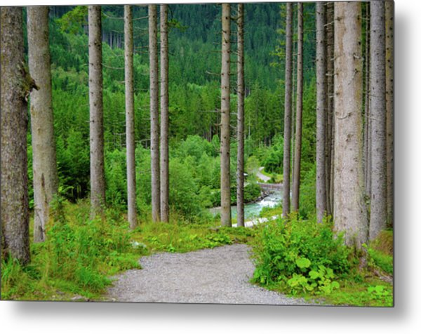 A Path To The River Metal Print