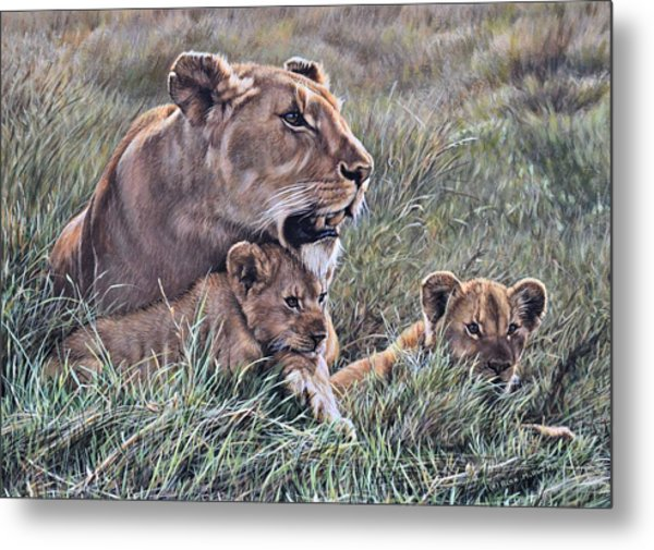 Metal Print featuring the painting A Quiet Moment Lioness And Lion Cubs by Alan M Hunt