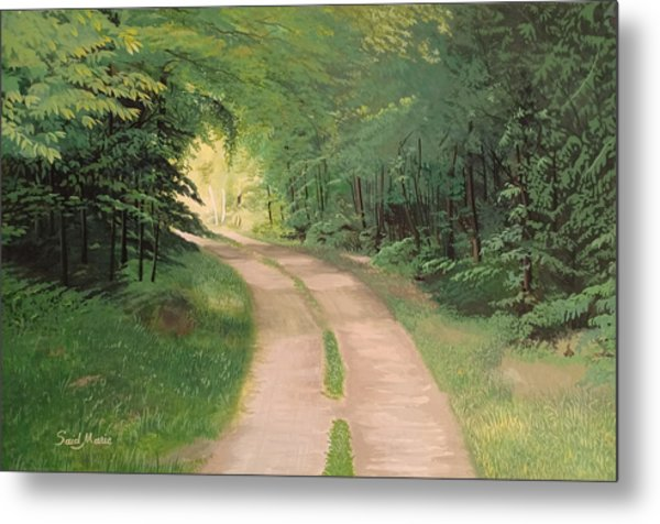 A Road In The Forest Metal Print