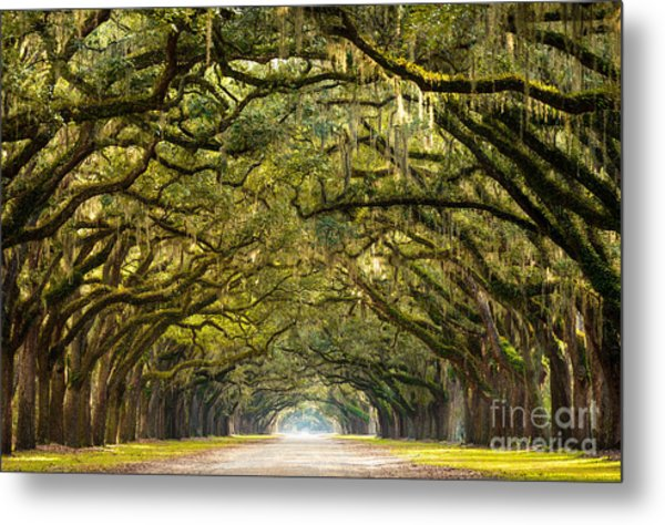 A Stunning, Long Path Lined With Metal Print by Serge Skiba