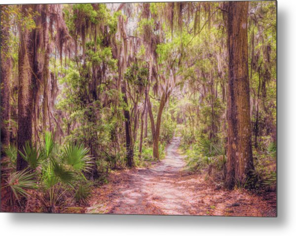 Metal Print featuring the photograph A Trail Into Time by John M Bailey