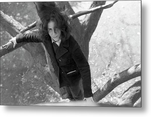 A Woman In A Tree, 1972 Metal Print