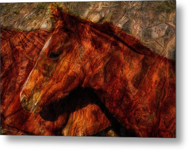 Abstract Horse Photograph Metal Print by Fernando Margolles