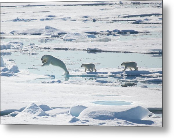 Across The Sea Ice Metal Print by Galaxiid