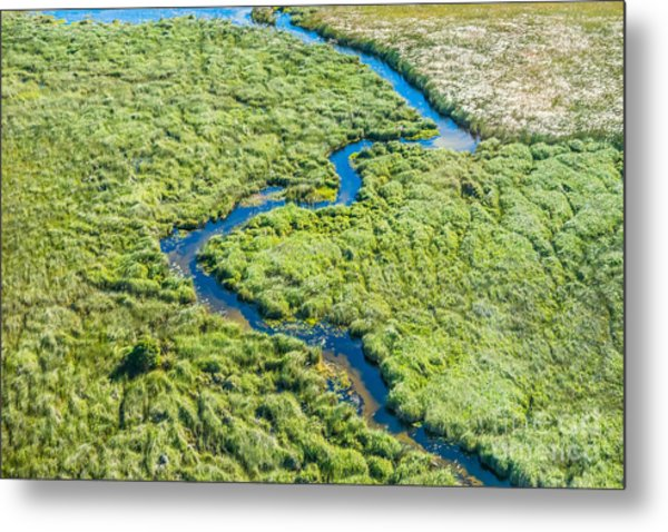Aerial View Of A Small Stream And Lush Metal Print