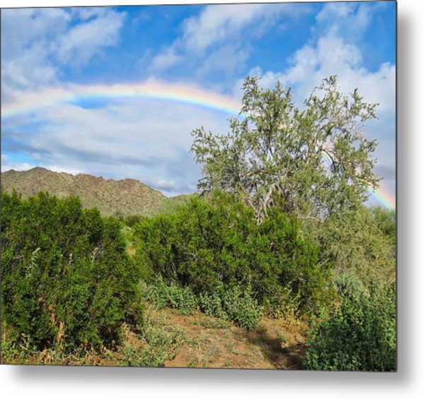 After An Arizona Winter Rain Metal Print