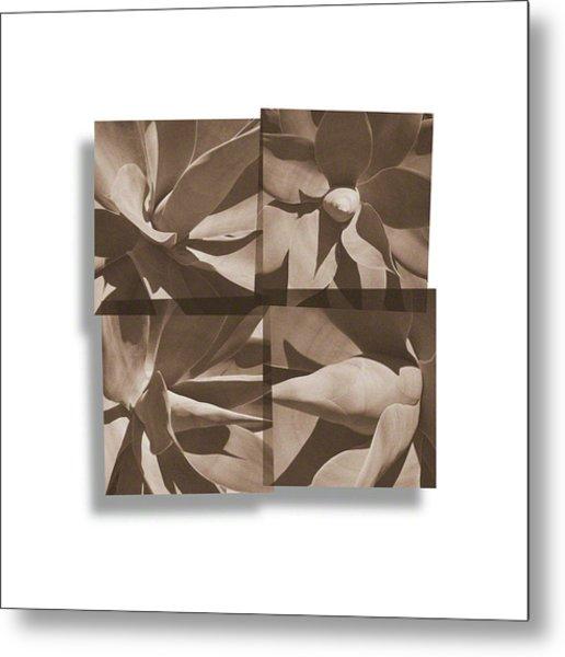 Agaves Metal Print