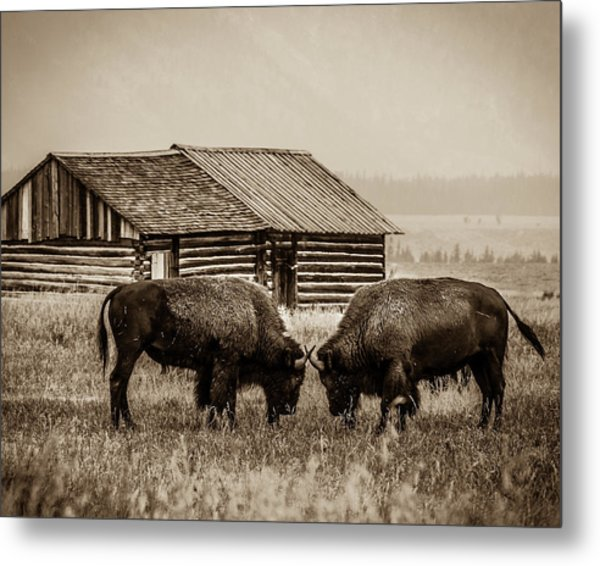 Age Old Conflict Metal Print