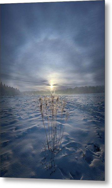 Metal Print featuring the photograph All Is Blue For A Time by Phil Koch