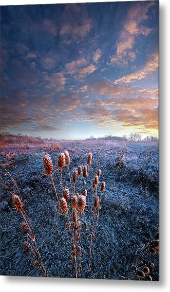 Metal Print featuring the photograph All That You Need Is In Your Soul by Phil Koch