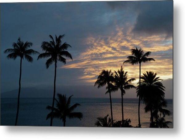 Aloha And Goodbye Metal Print